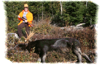 Moose Hunting in NB