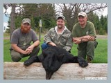 pic_01b_bear_hunting_in_nb_spring_2014