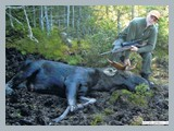 pic_37_2011_moose_hunt