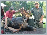 pic_42_2008_moose_hunt