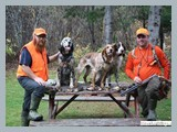 pic_52e_wingshooting_fall_2014ruffed_grouse_and_woodcock_hunting_in_new_brunswick