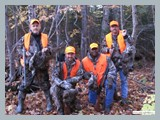 pic_56_ruffed_grouse_hunting