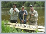 pic_67_brook_trout_from_river_2011
