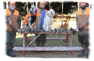Ruffed grouse and woodcock Upland game bird hunting in NB at Haley Brook Camps